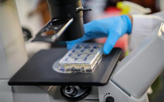 H Γερμανία eγκαινιάζει τη μονοκλωνική θεραπεία ως «παθητικό εμβολιασμό»